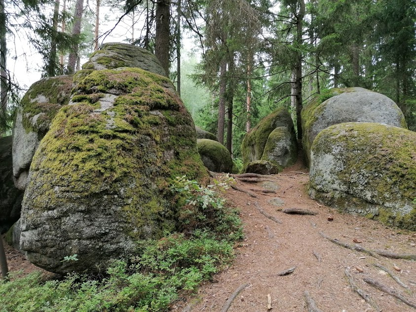 Naturpark Blockheide